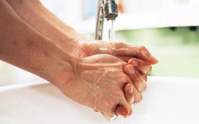 Harmful Bacteria Found Within Bathrooms